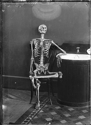 skeleton ssn